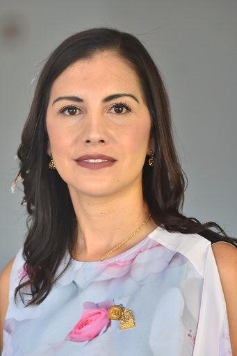 Dip. Elsa Adané Méndez Álvarez