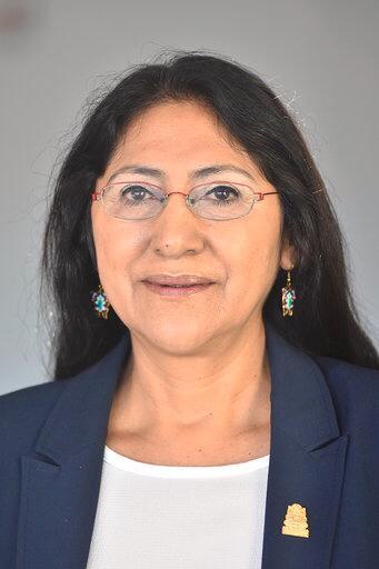 Dip. Laura Patricia Polo Herrera