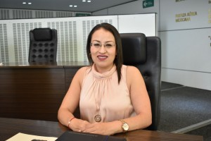 Dip. Beatriz Guadalupe Marmolejo Rojas