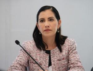 foto2 Dip. Elsa Méndez