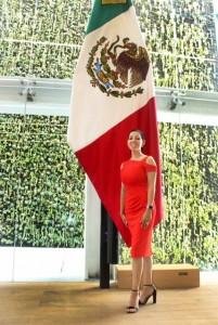 FOTO DIP. MA. CONCEPCION HERRERA