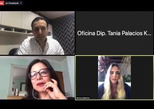 Diputada Tania Palacios 2